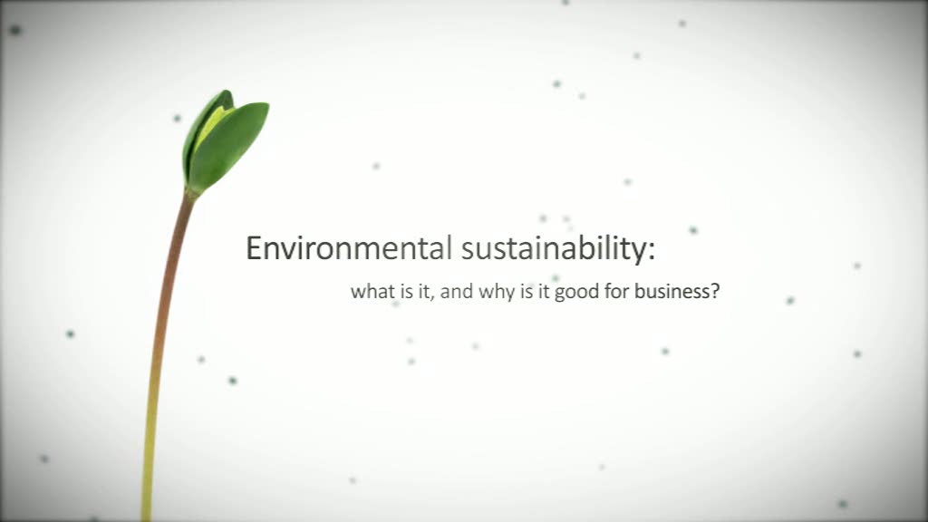 Environmental Sustainability in Business